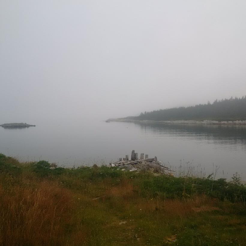 Sea & Mist